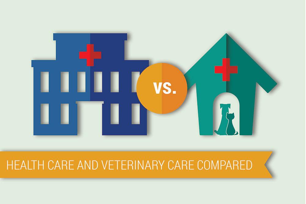 pet care health care spending header 04
