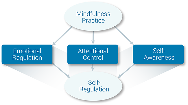 mindfulness three skills posner