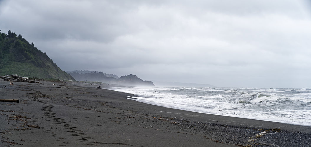 lost coast redwoods national and state parks california