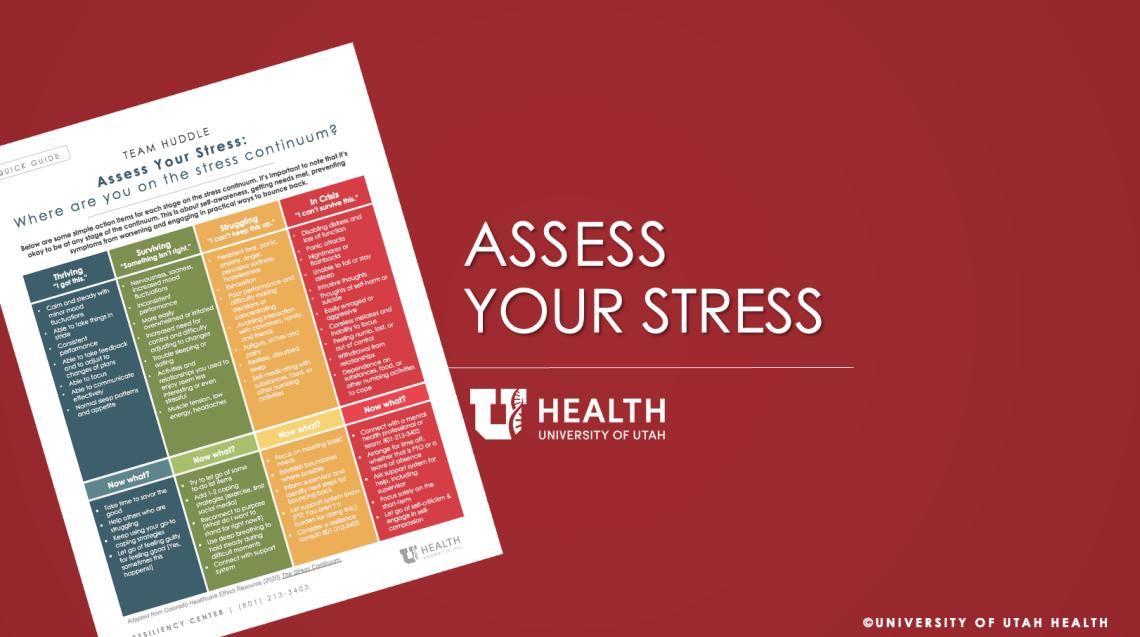 assess your stresspptx